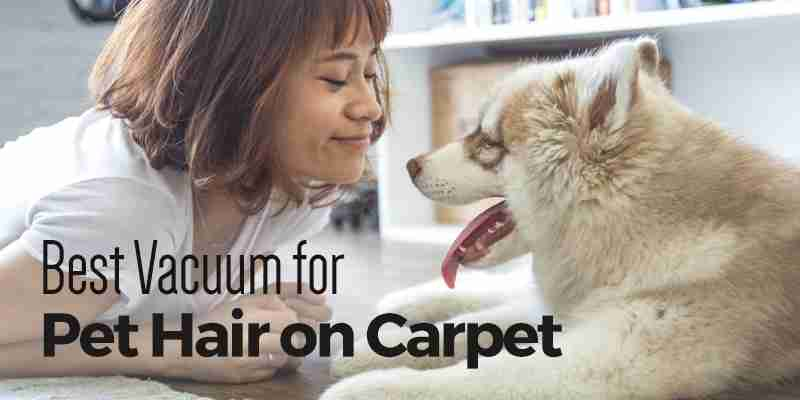 Best Vacuum for Pet Hair on Carpet